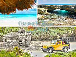 jeep tour cozumel is the perfetct Cozumel adventure to the other side of cozumel and Punta Sur Park Cozumel