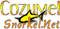 snorkel in cozumel with cozumel snorkel for the best snorkeling in cozumel mexico