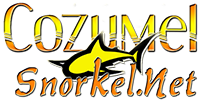 snorkeling tour in cozumel mexico snorkel tours