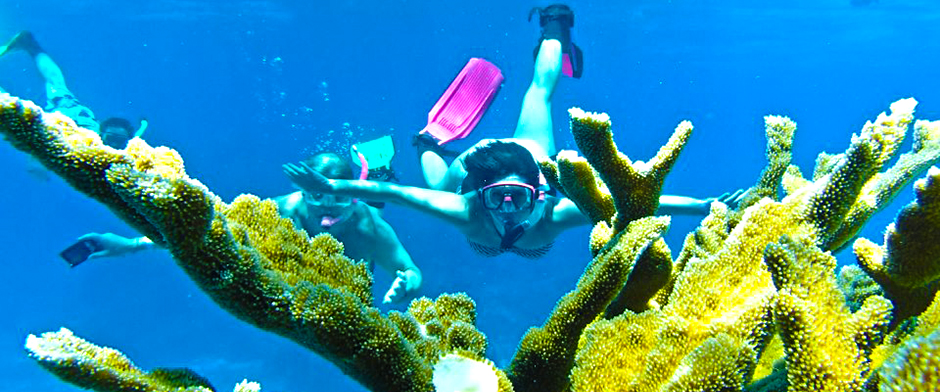 Cozumel Snorkeling tour with the best Snorkeling en Cozumel Mexico